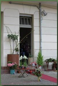 Ein Stückchen Eden - Florastraße 11