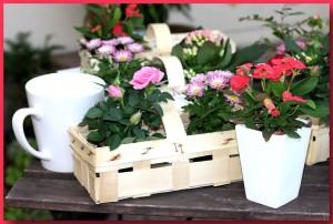 Floragarten