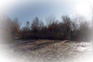 Sanftmut im Winter